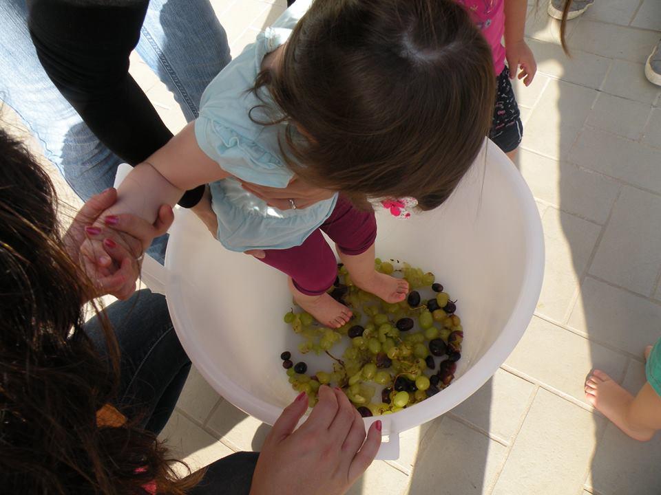 festa dell'uva2
